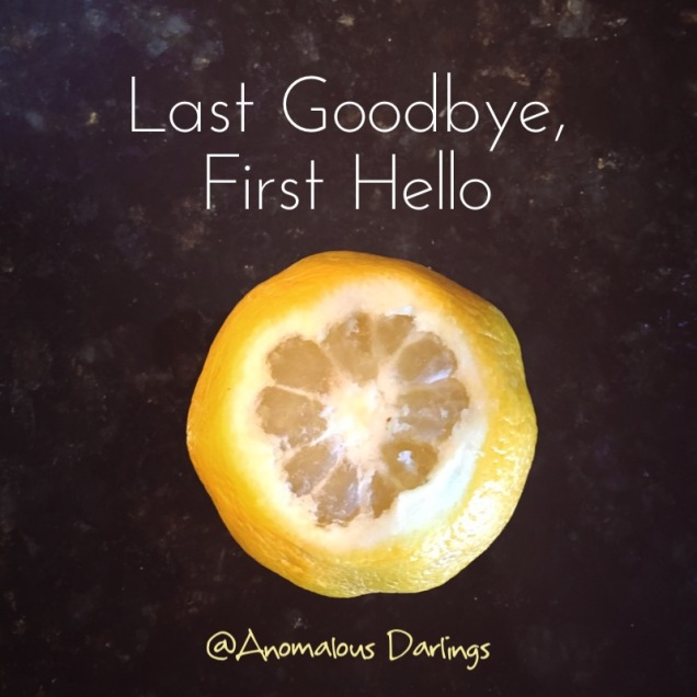 Last Goodbye, First Hello.jpg